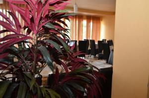 restoran-kod-gaje-valjevo-07